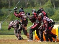 Actividad por equipos