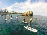 Paddle surf desde Noja