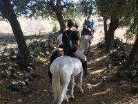 Con los caballos en medio de los arboles
