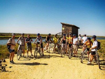 Rumbo Sur Alquiler de Bicicletas