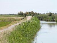 Carril bici Delta del Ebro