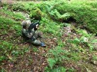 Battaglia nella natura