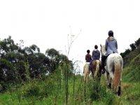 Walking on horseback