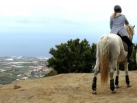 Seeing the ocean from the horse