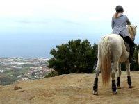 Viendo el oceano desde el caballo