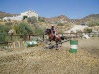 clase de equitacion de salto
