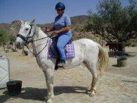 mujer a los lomos de un caballo blanco con manchas