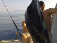 不要用你的钓鱼不惜一切大小的鱼