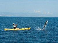 pesca en kayaks