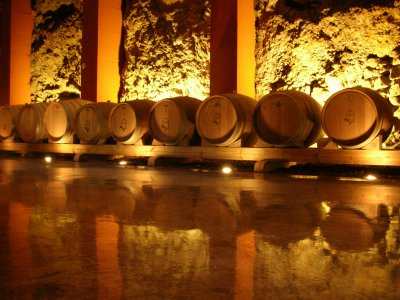 Tour through our wine cellars + 3 wine glasses