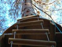 Escalera para trepar al árbol
