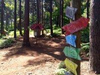 Indicaciones del parque