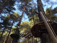 Circuito de arborismo
