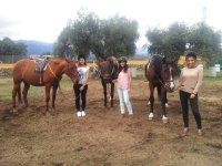 In the ring holding the horses