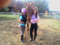 Chicas mimando al equino