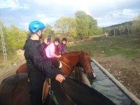Con los caballos en el abrevadero