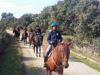 Pasando por el camino con los caballos