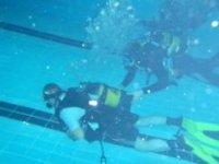 潜水长课程