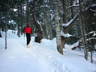 Escola D'esquí i Snowboard Tavascan Raquetas de Nieve