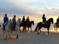 Ruta por la playa con caballos