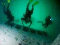 Descubre el Ocean Revival