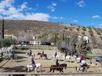 Actividades en la pista de equitacion