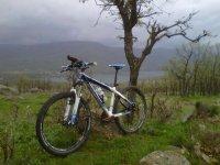 Bici apoyada
