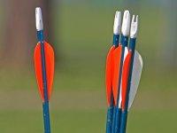 Flechas de la practica