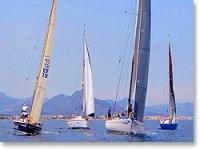喜欢帆船运动和帆船出租帆船赛