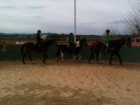 caballos en la hipica mb