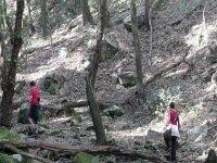 parque natural de los alconocales