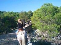 Horseback riding in Moratalla