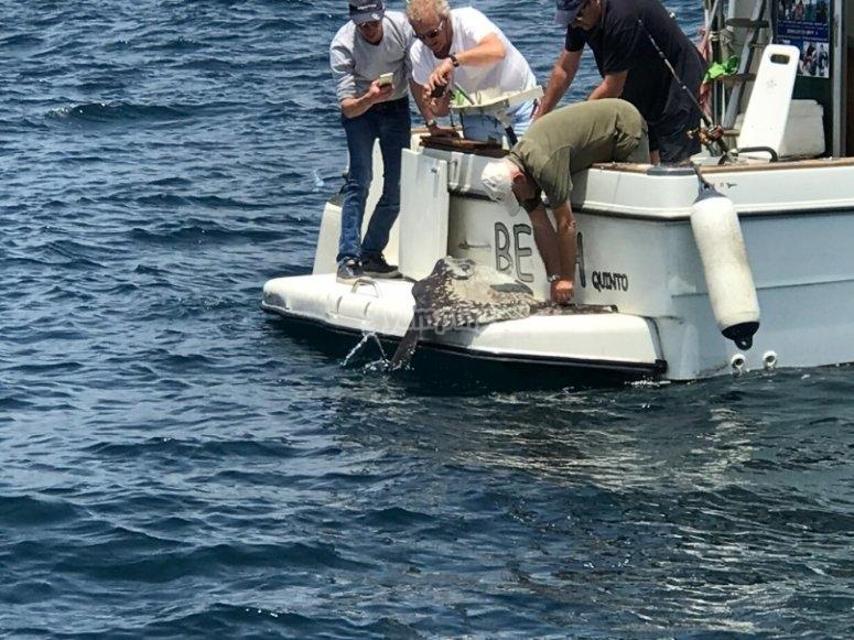 Pesca a Marbella dalla barca