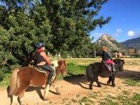 Walking the ponies of Gubia