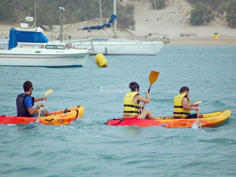Remando en los kayaks en Sancti Petri