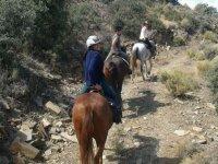 Camino a caballo pendiente arriba