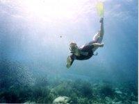 在巴塞罗那潜水