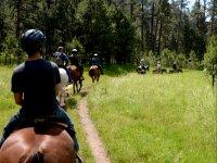 A cavallo sul sentiero