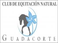 Club de Equitación Natural Guadacorte Campamentos Hípicos