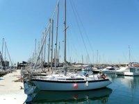 标志跳水在巴塞罗那帆船