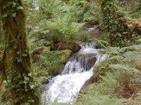 Senda Fluvial de Tui