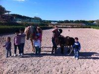 ponis y niños