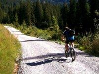山地自行车骑
