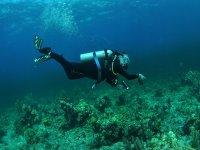 Viendo paisajes subacuaticos