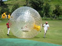 Dentro de la bola