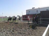 practicando sobre el caballo