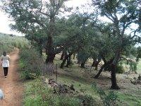 Caminando en Extremadura
