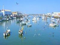 puerto de isla cristina kayak