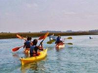 Excursion en kayak Isla Cristina