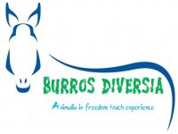 Burros and Company Diversia